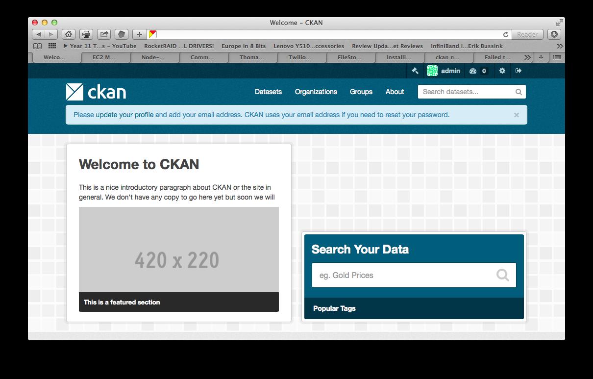 ckan-large